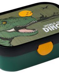 caja_dinos2